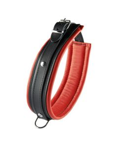 Zwart met rode halsband